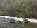 02.Лед на речке Лазовка.