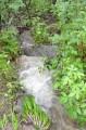 на б. Витязь, после тайфуна все ручьи превратились в водопады-мини