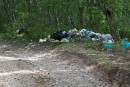 Дорога на бухту Теляковского. Может кто-то узнал свой мусор?