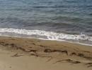 20.Пляж.