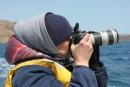 Фотографы фотографируют...