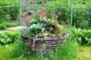 Волшебство Ботанического Сада