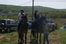 Шамора.инфо на прогулке на лошадях. Бухта Щитовая.