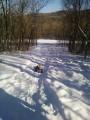 Горка, с которой можно спускаться на санях и ледянках (снежок еще не убран)
