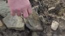 Саша показывает черепицу храма, которую бросили археологи.