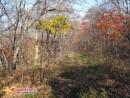 На обратном пути любуясь красотой осеннего леса я думал о тех солдатах которые, можно сказать лапками грызли скалу и построили все эти укрепления.