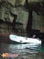 Заплыл в пещеру пользуясь полным отсутствием волны.
