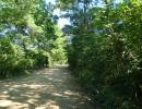 дорога на Витязь