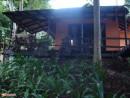 деревня слонов, размещают в таких вот домиках